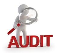 Audit_guy_website.jpg