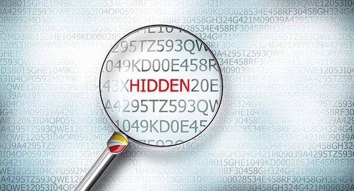 hidden data sm.jpg